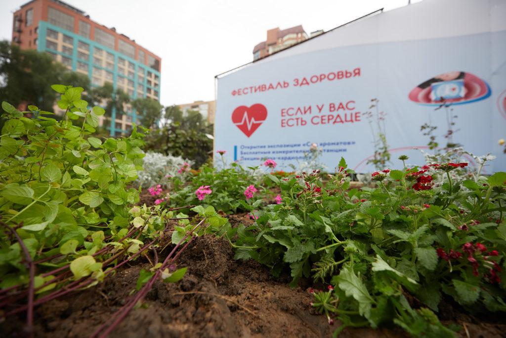 В преддверии дня сердца в «Аптекарском огороде» прошел Фестиваль здоровья и открылся «Сад ароматов»